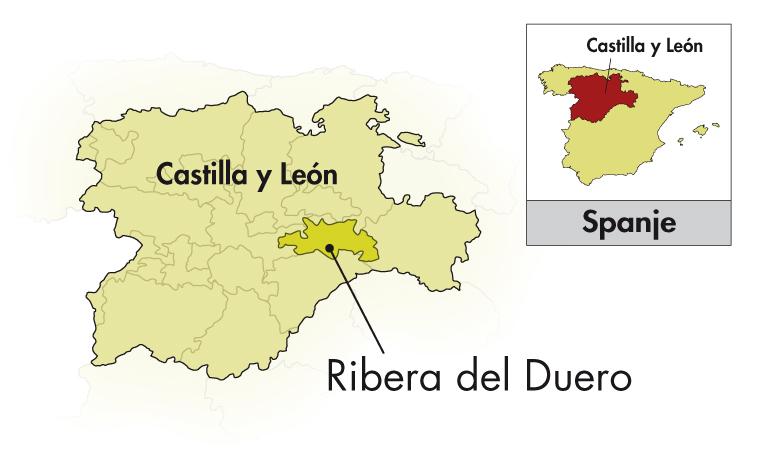 Bodegas Rodero Ribera del Duero Crianza