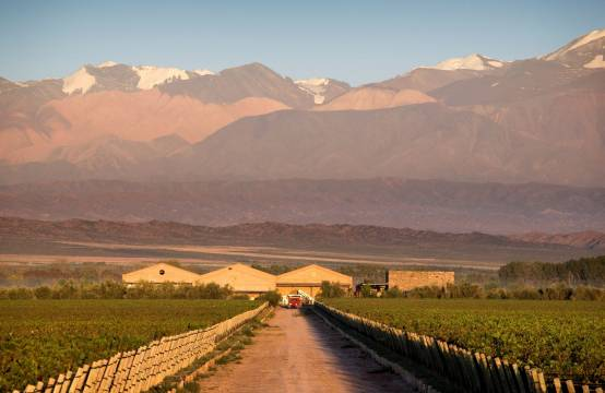 Chakana Estate in Mendoza